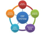 Does Your Business Really Need an ERP System?